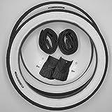 2x CST Blanco pared 16pulgadas Neumáticos + AV Reticulado techo abrigo-Bicicleta plegable (16x 1.75, 47-305