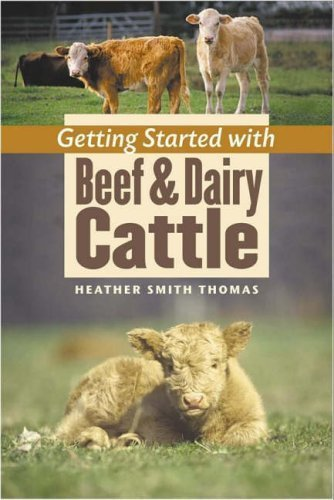 Getting Started with Beef and Dairy Cattle by Thomas, Heather Smith Published by Storey Books (2005)