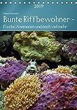 Bunte Riffbewohner - Fische, Anemonen und noch viel mehr (Tischkalender 2019 DIN A5 hoch): Tropische Riffe bieten eine große Vielfalt an Lebewesen und Farben (Planer, 14 Seiten ) (CALVENDO Tiere)