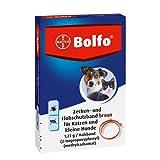 Bolfo Zecken- und Flohschutzband für Katzen und kleine Hunde