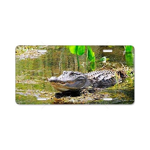 CafePress-Alligator in Swamp mit Tee-Aluminium Nummernschild, vorne Nummernschild, Vanity Tag