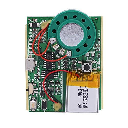 Zerone Re-recordable USB Musik Ton Sprachaufnahme Spieler Chip Modul 1W Aufladbarer Lithium Batterie mit 480 Sekunden Aufnahme für DIY Karten/Spielwaren (Taste kontrollieren) (Sound-modul Chip)