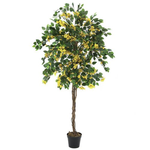 Euro Palms 82507070 Bougainvillea 150 cm, gelb