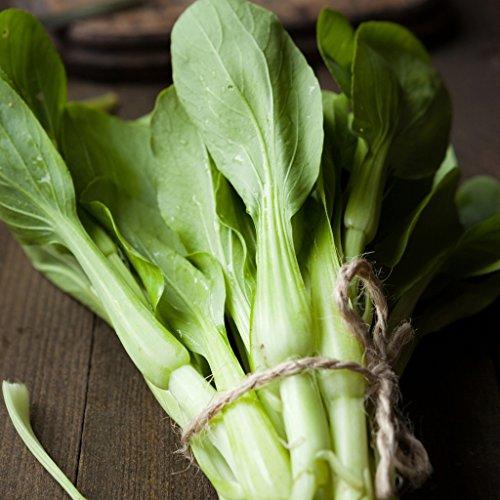 groseeds-vegetable-seeds-kailaan-v-ori-04-100-seeds-minimum-per-packet
