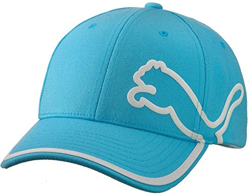 Puma Monoline Relaxed Fit Cap Mens Herren Sport Lifestyle Basecap Blau (Golf-hut Puma)