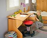 BioKinder 22611 Emil Kinderschreibtisch Schreibtisch für Kinder Höhenverstellbar mit 2 Schubkästen aus Massivholz Erle 120 x 60 x 63-75 cm