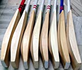 Best English Willow Cricket Bats - WilCraft WC 40-42mm Big Edge and Spine Full Review