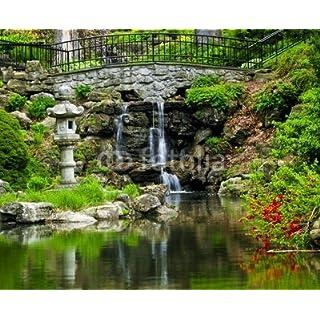 adrium Cascading Waterfall and Pond(7956811)
