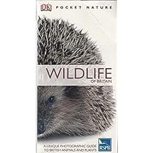 Pocket Nature Wildlife Of Britain (Paperback)