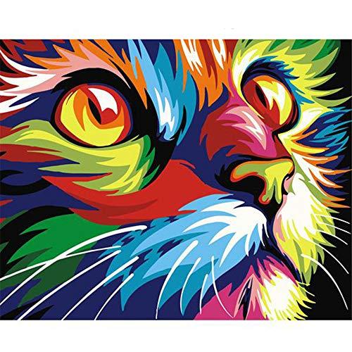 Malen Nach Zahlen Für Erwachsene Abstrakt Farbige Große Augen Katze Home Decor DIY-No Frame