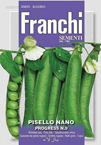 Erbsensamen – Erbse Nano Progress N.9 von Franchi Sementi