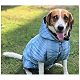 Wagging Fashion Blue Hoodie For Dogs (9)