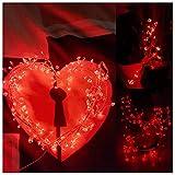 LED Lichterkette, Mr.Twinklelight 120er LED Draht Lichterkette für Garten, Party, Weihnacht und Haus Dekoration. Rot