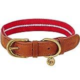 Blueberry Pet Klassisches Gestreiftes Basis Echtleder Hundehalsband in Rot und weiß, M, Hals 38cm-46cm