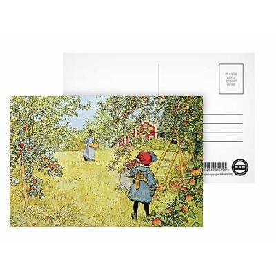 the-apple-harvest-by-carl-larsson-postkarten-8er-packung-152x102-cm-beste-qualitat-standardgraaye