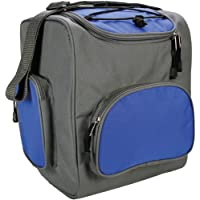 Cartrend 80287 Cooler bag, 16 liters, 12 V / 48 W, foldable, little space requirements, for 6x 1.5 liter bottles