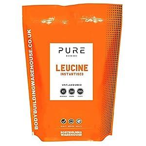 51w 8HnpoAL. SS300  - Bodybuilding Warehouse Pure Instantised Leucine Powder