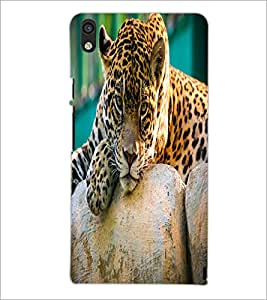 PrintDhaba Leopard D-2055 Back Case Cover for HUAWEI ASCEND P6 (Multi-Coloured)