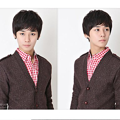 HJL-Japon et la Cor¨¦e du sud ¨¦l¨¨ves beaux perruque cheveux courts cheveux chez les hommes les hommes non-mainstream perruque , dark auburn