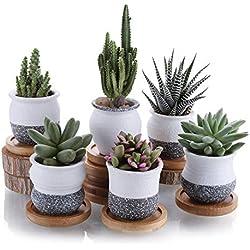 T4U 6cm en Céramique Mini Corée Style de Neige Série Complète Plante Succulente Pot Pot Cactus Plant Pot Pot de Fleur Container Planter avec des Plateaux en Bambou Paquet de 6