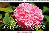 Alte Rosen – Mondkalender (Wandkalender 2013 DIN A2 quer): Nostalgische Blütenwelt (Monatskalender, 14 Seiten)