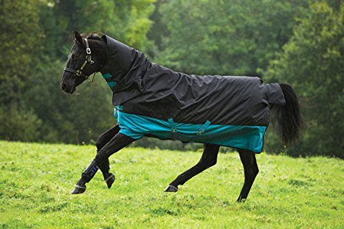 Horseware Amigo Mio Turnout medium black turquoise Weidedecke Winterdecke (145)
