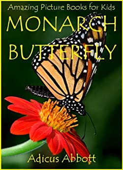Monarch Butterfly: An Amazing Animal Picture Book for Kids by [Abbott, Adicus]