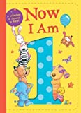 Now I Am 1 - Best Reviews Guide