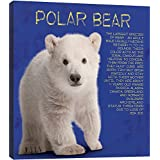 Image of Tree-Free Greetings 85776 11.25 x 11.25-Inch Polar Baby Bear Themed Wildlife Art EcoArt Home Decor Wall Plaque - Comparsion Tool
