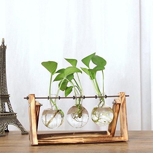 ToDIDAF Kreative Hydroponische Pflanzenvase mit Vintage Holzständer, Transparente Glasflaschenvase + Holzständer, für Coffee Shop/Zimmer/Zuhause/Büro/Desktop DIY Dekoration (3 x Glasvase)