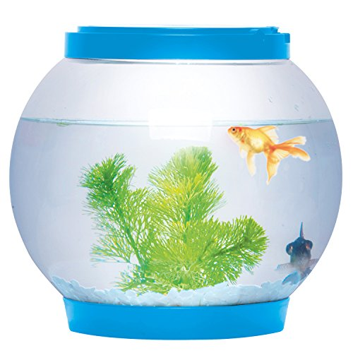 Sentik® 5 litre Blue Light Up Round Glowing Glass Fish Bowl Tank LED Desktop Aquarium Test