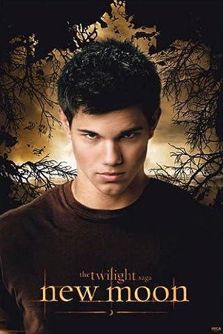 Poster Twilight New Moon - Jacob Trees - Größe 61 x 91,5 cm - Maxiposter