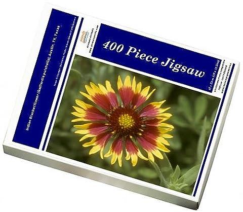 Photo Jigsaw Puzzle of Indian Blanketflower (Gaillardia pulchella), Austin, TX, Texas