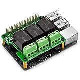 Electronics-Salon RPipip - Módulo de extensión de relé de alimentación para Raspberry PiA+-B+ 2B 3B