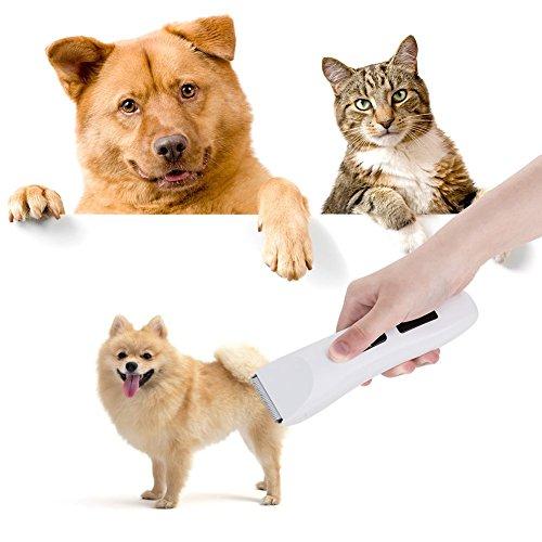 5ivepets Haustierschermaschine- Geräuscharmer Haarschneidemaschine Hund und Katze