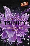 Trinity - Gefährliche Nähe (Die Trinity-Serie, Band 2) - Audrey Carlan