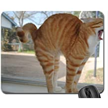 Rise-n-Shine Mouse Pad, Mousepad (Cats Mouse Pad)