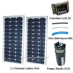 Kit pompe solaire 2x55W avec pompe Shurflo 9325 400 l/h