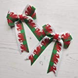 Pack of 2 Handmade Welsh Flag Hair Bows