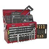 SEALEY Werkzeugkiste ap22509bbcomb 9Schubladen mit Kugellager Folien–Rot/Grau & 205pc Tool Kit