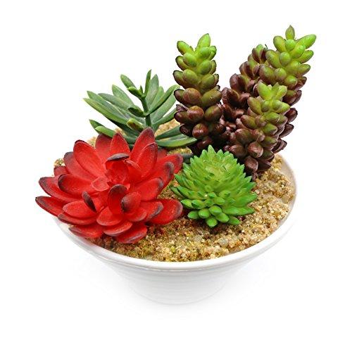 The perseids modernes Mini Deko Design Fake Kunststoff grün Pflanzen realistisch künstlichen Sukkulenten Blume Modell 2