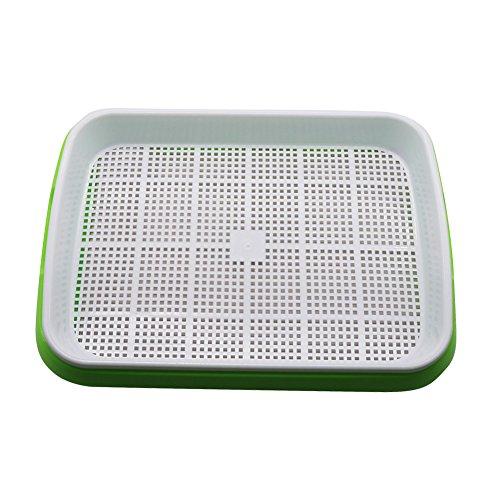 Adhere To Fly 1 Satz Bohnen Keimung Trays Sprouts Anbaugeräte Home Küche Keimung Ausrüstung (Grün)