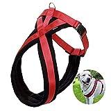 Alaof Hundegeschirr-Weste,Einstellbar Schnelle Passform No-Pull,Perfekt zum Ausbildung,Gehen,und Kontrolle - Gepolstert zum Komfort Hunde-Gurtzeug,Red,M
