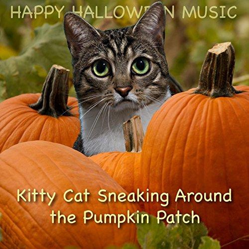Kitty Cat Sneaking Around the Pumpkin Patch (Happy Halloween Kitty)