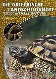 Die Griechische Landschildkröte: Testudo hermanni boettgeri (Art für Art / Terraristik)