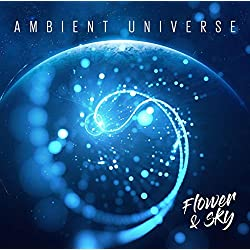 Ambient Universe