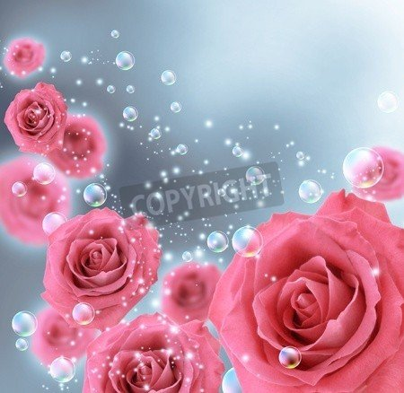 """Poster-Bild 70 x 70 cm: """"Card with roses and bubbles"""", Bild auf Poster"""
