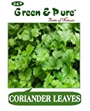 Green & Pure - High Yield Organic Vegetable Seeds - Coriander - Pack of 3 for Kitchen / Terrace / Home Garden