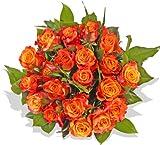 """Blumenstrauß Blumenversand Rosen Rosenstrauß""""Marie Claire"""" +Gratis Grußkarte+Wunschtermin+Frischhaltemittel+Geschenkverpackung"""