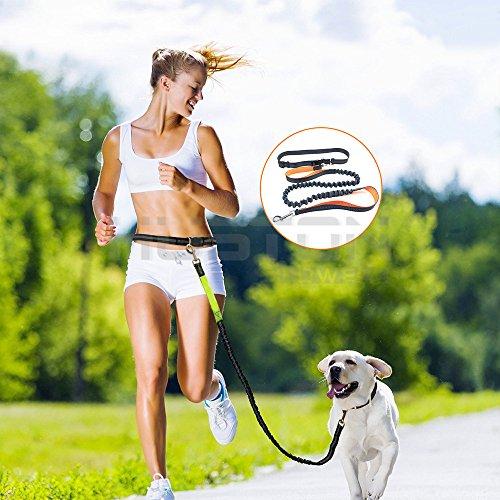 aution-house-manos-libres-correa-de-perro-reflexivo-de-la-seguridad-110-logitud-bungee-plomo-dual-su